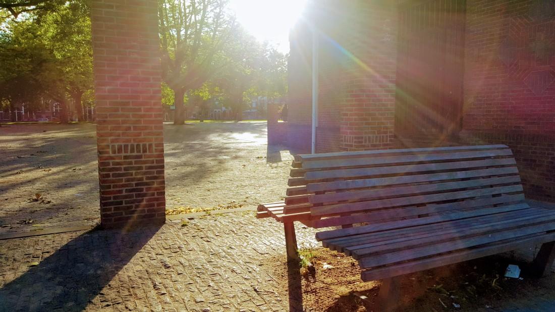 Zon in Park Energie Genieten