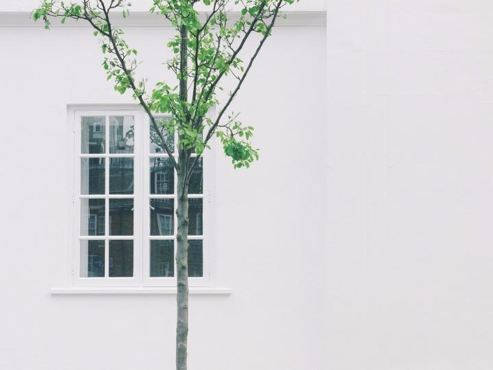 Minimalistisch Huis en Tuin