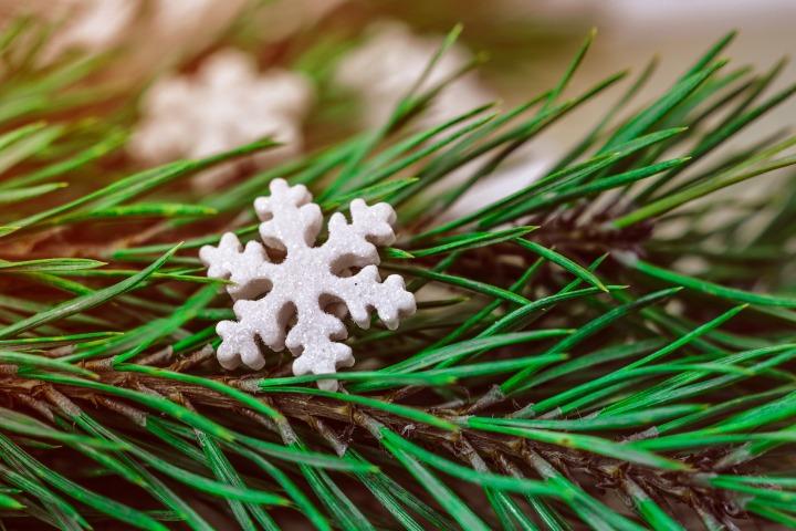 Kerst ster op groene tak
