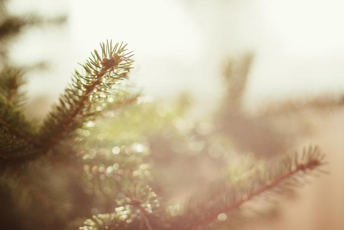 Minimalistische_Kerst_Decoreren_Versiering