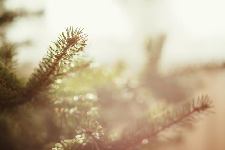 Een fijne Kerstsfeer zonder troep: 6 minimalistischekerstdeco-tips