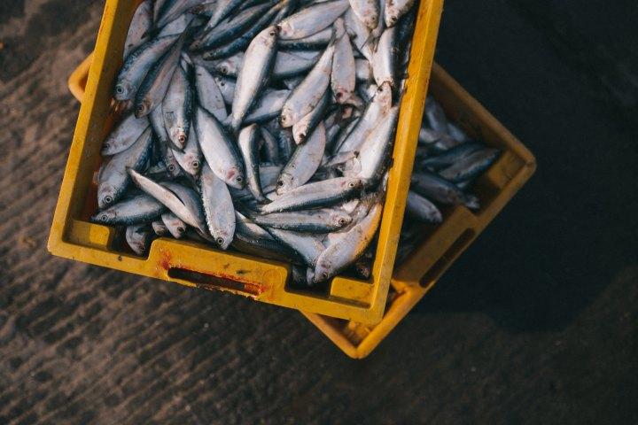 Eten we onbewust plastic? | Plastic Free JulyEinde