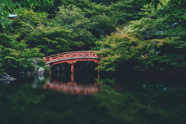 Vakantiedate 2: Japan |Coronazomer